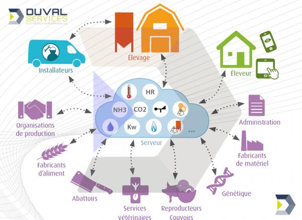 production-avicole-Duval-Services